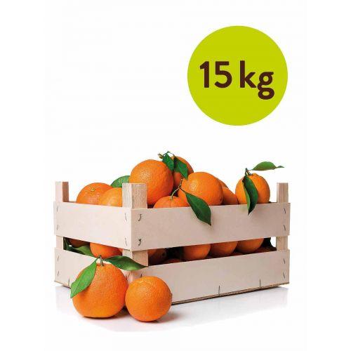 15 kg Washington Orangen direkt aus Sizilien, erntefrisch und aromatisch