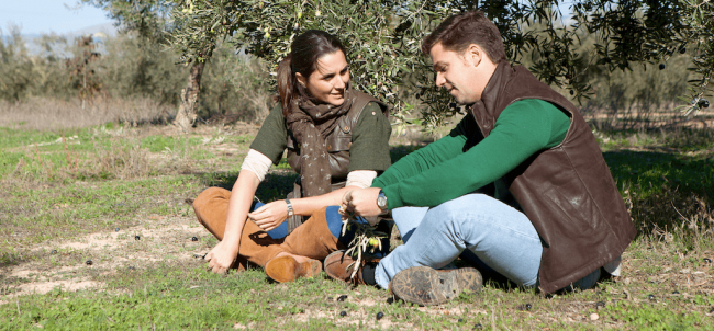 OMED Olivenöl: Ein Herstellerporträt