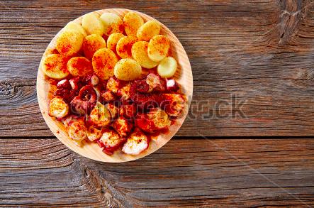 Galizischer Oktupus