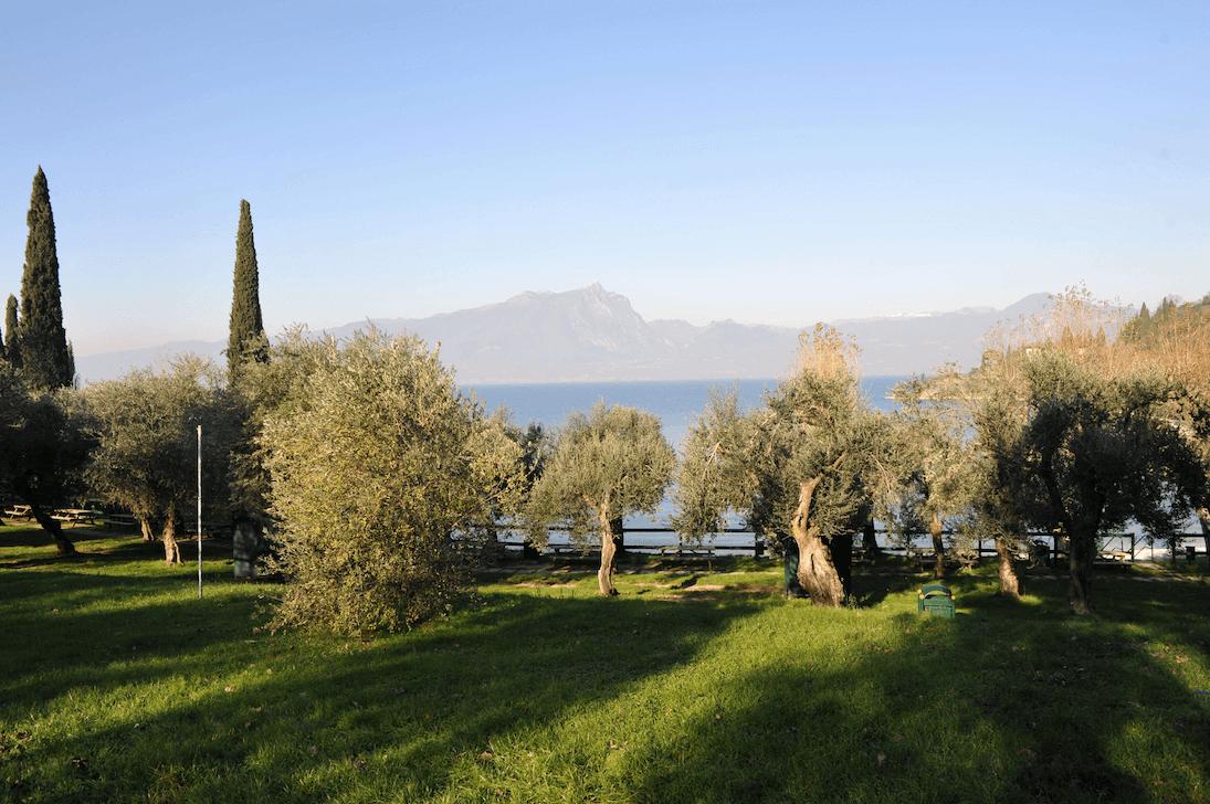 Turri am Gardasee
